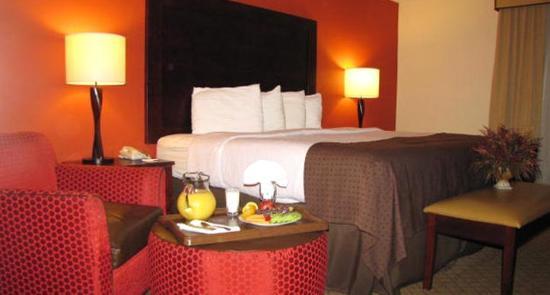 Radisson Hotel Sheffield: One King Bed