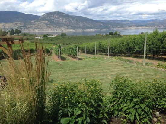 Penticton, كندا: Connoisseur Wine Tours