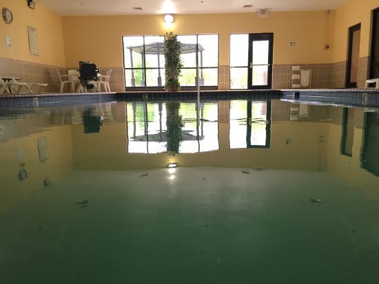 Comfort Inn & Suites Rogersville: Indoor pool