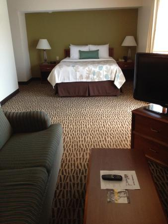 Hawthorn Suites By Wyndham Fishkill/Poughkeepsie Area: Queen Suite