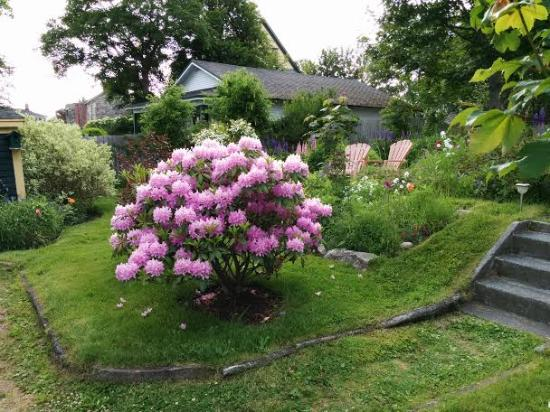 Rothesay House Heritage Inn Bed & Breakfast: Lovely garden at Rothesay House