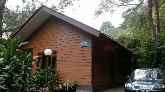 Bali Zoo Review vs Bali Safari Marine Park | Smell Like Home