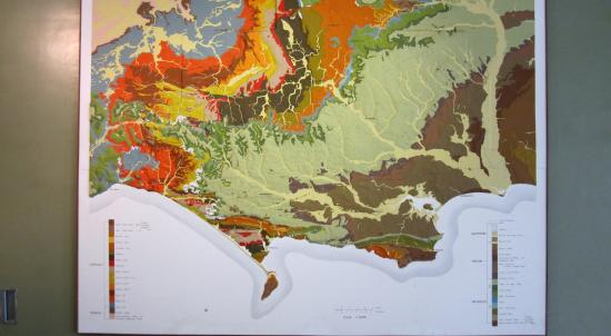 Dorset County Museum: Jurassic Coast topographical map
