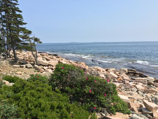 Windward Cottages: Hike the trails in nearby Acadia National Park.