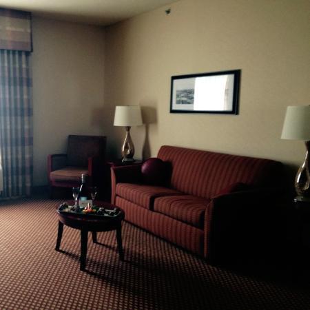 Hilton Garden Inn Las Cruces: Seating area