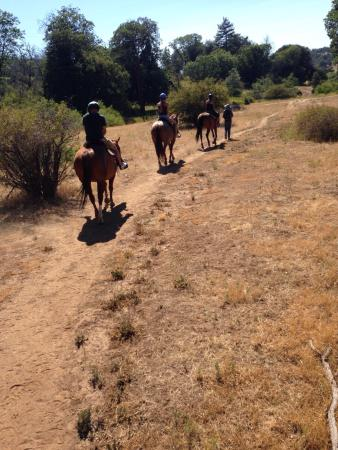 Kenner Ranch Riding, Discovery and Development Center : My family of 4 loved this adventure!!!! Kathleen was a sweetheart and so were the horses.