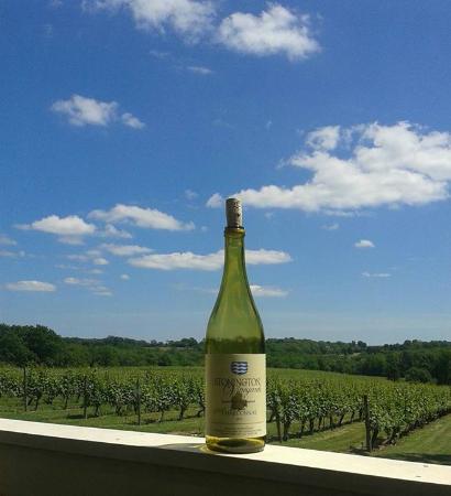 สโตนิงตัน, คอนเน็กติกัต: Sheer Chardonnay on the deck