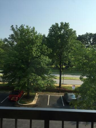 View - Picture of Courtyard Silver Spring North/White Oak, Silver ...