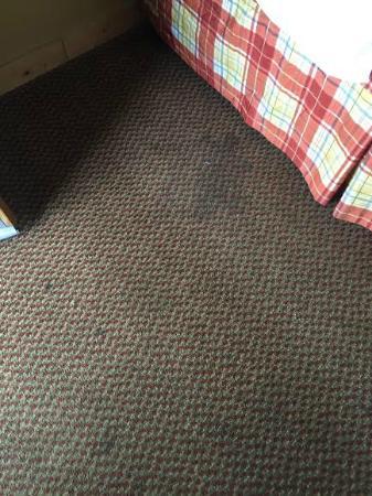Timbers Lodge: carpet