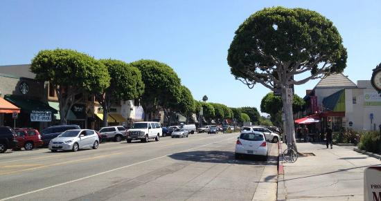 Larchmont Village : walk under the trees and enjoy our unique shopping, dining and wellness district