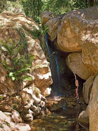 White Lotus Foundation: Waterfall