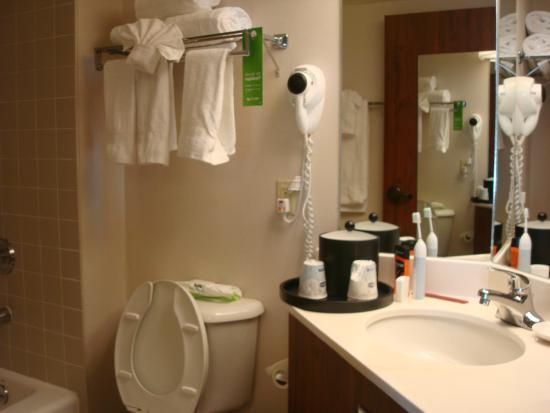 Hampton Inn Salt Lake City-Downtown: Bathroom