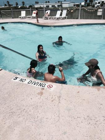 Pioneer Beach Resort : Very clean and fun pool!!!