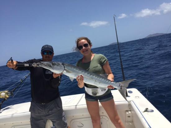 Shark petting picture of ocean surfari fishing charters for Virgin islands fishing