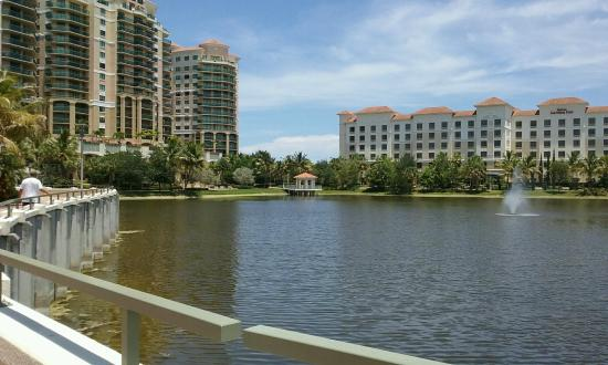 Hilton Garden Inn Palm Beach Gardens: View from the bridge that provides access to shops and dining.