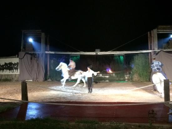 Cabaret Equestre des Dunes : photo0.jpg