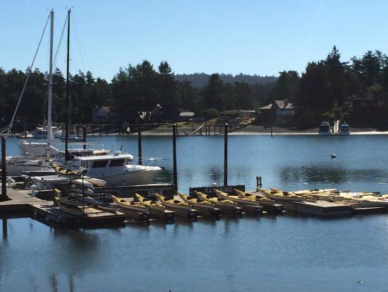 Crystal Seas Kayak Tours Reviews