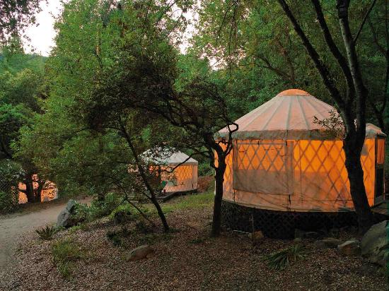 White Lotus Foundation: Yurt Village Night