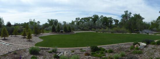 Hampton Inn & Suites Buffalo: The beautiful green area adjoining the patio.