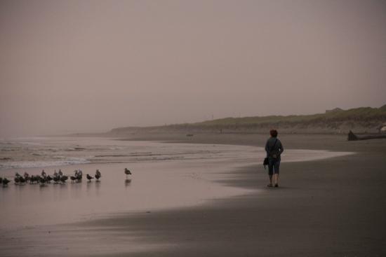 Ocean Shores, WA: The beach