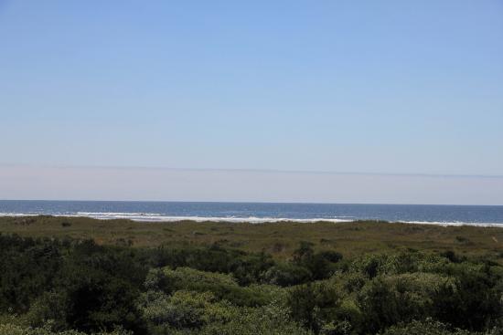Ocean Shores, WA: Ocean view