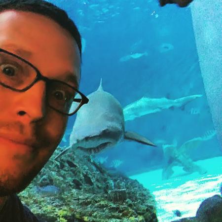 Manteo, NC: Shark Attack