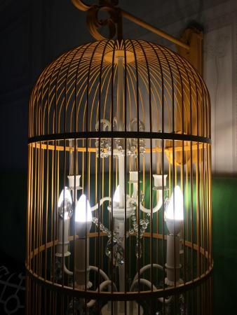 Birdcage Lighting In The Room Picture Of Kimpton Hotel