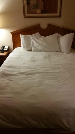 Country Inn & Suites by Radisson, Florence, SC: Queen Bed