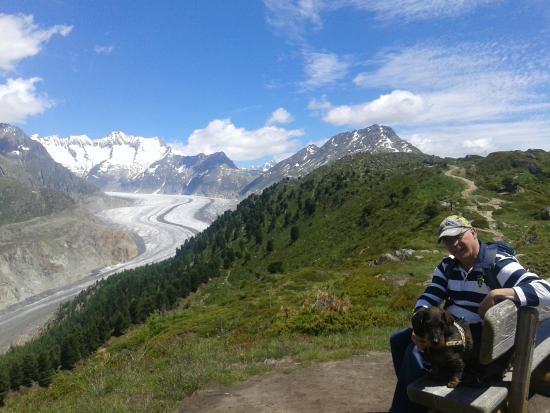 Chalet Residence Vermala : Aletschgletscher