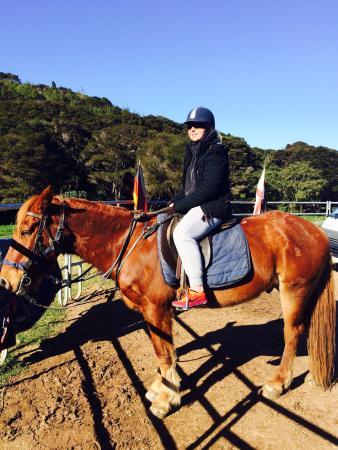 Остров Уаихеке, Новая Зеландия: Ready to ride!!