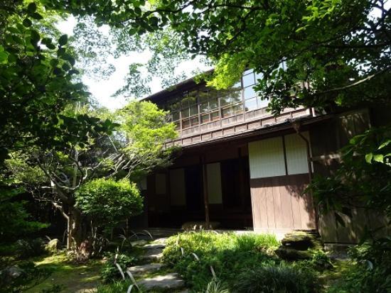 Terashima Kurando Samurai Villa: 庭にも出られる。