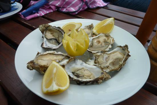 The Oyster Bar & Restaurant: Delicious fresh oysters