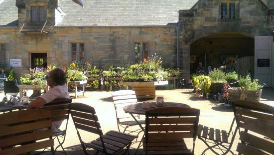 Scotney Castle Tearoom