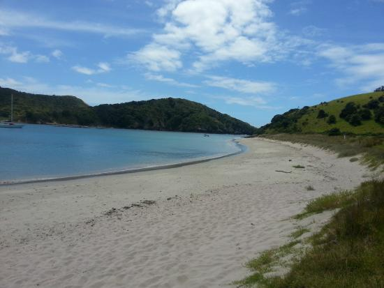 Bay of Islands, نيوزيلندا: Island we spent an afternoon on