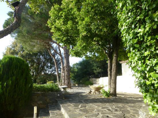 Bella Vista : Jardin vers les studios