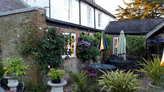 Badgers B&B: Badgers Garden