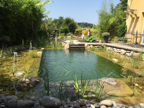 très beau jardin pour une balade le long de l eau, de ...