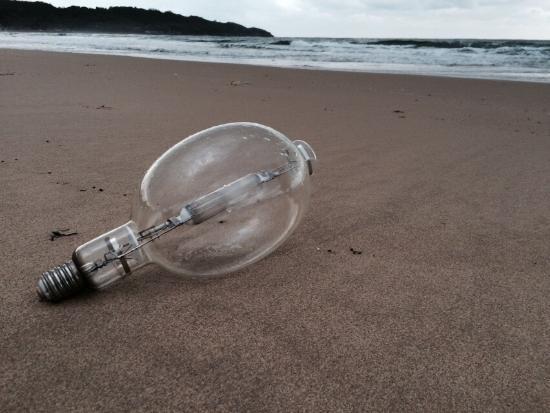 Kotogahama Beach : photo1.jpg