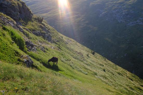 Catalonian Pyrenees, สเปน: Sunrise over Vall de Núria. Taken from the path to Torreneules