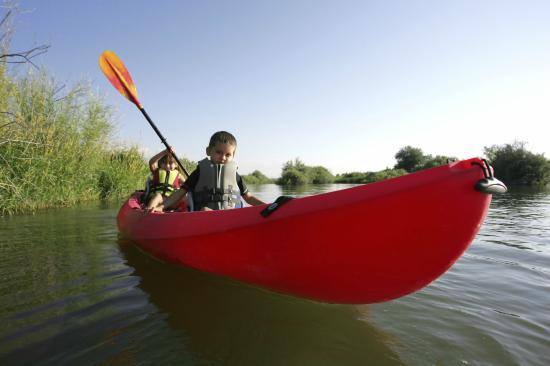Manteo, NC: kayaking-outer-banks-obx-kitty-hawk-kites