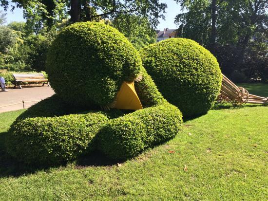 Poussin endormi - Picture of Jardin des Plantes, Nantes - TripAdvisor