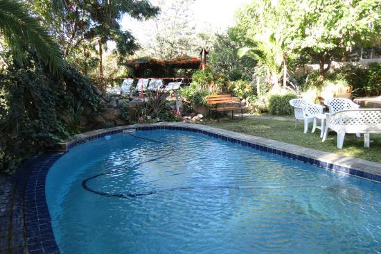 Guesthouse Terra Africa: Garten