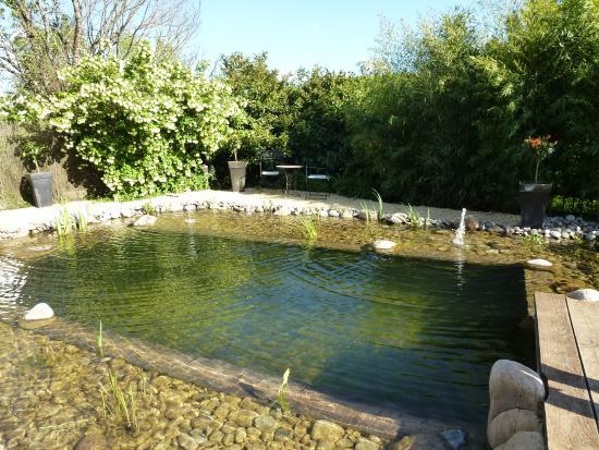 les jardins d 39 eau carsac la piscine naturelle photo de les jardins d 39 eau carsac aillac. Black Bedroom Furniture Sets. Home Design Ideas