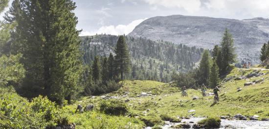 Excelsior Dolomites Life Resort: Fanes