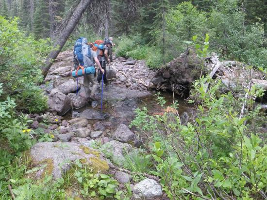 Swan Lake, Монтана: Water sources plentiful