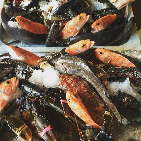 Sciacca Grill Saint Julians: Fresh Fish Display