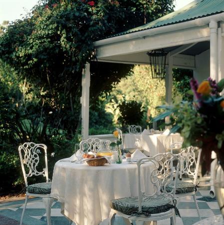Falcons View Manor: Tea-garden