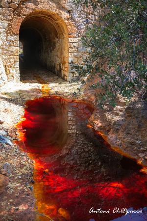 Nacimiento del Rio Tinto - Picture of Fieldwork Riotinto