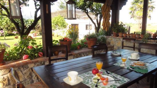 Posada Rural Mari Paz: Breakfast in the garden
