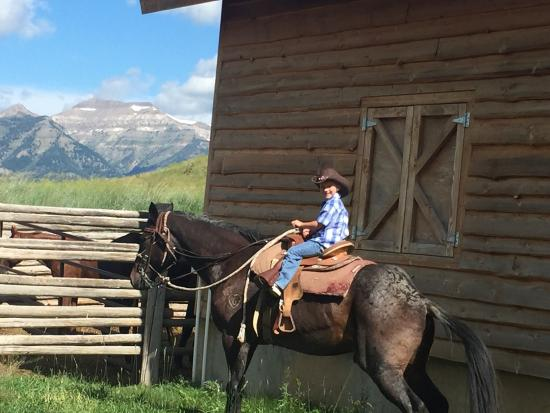 The Sage Overlook: This was a phenomenal ride. He horses were big and gentle. They rode easily with me, my husband,